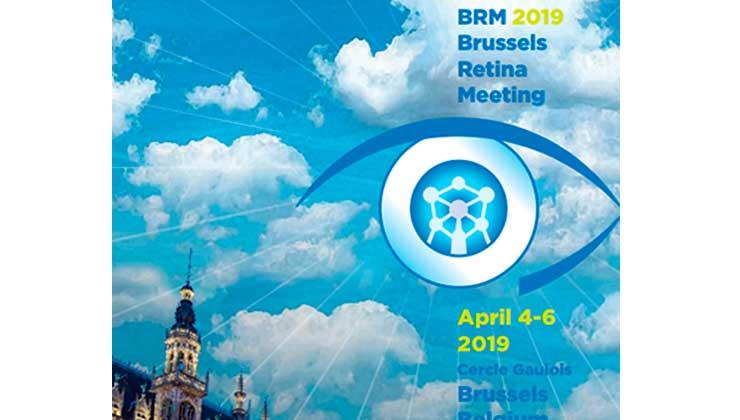 brm bruselas meeting 2019