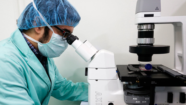 New progress of the IMO Foundation for the treatment of retinal diseases without cure