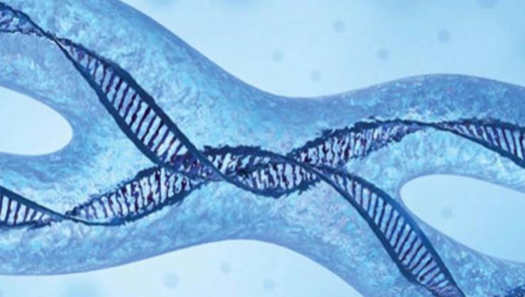 genetic testing programme image