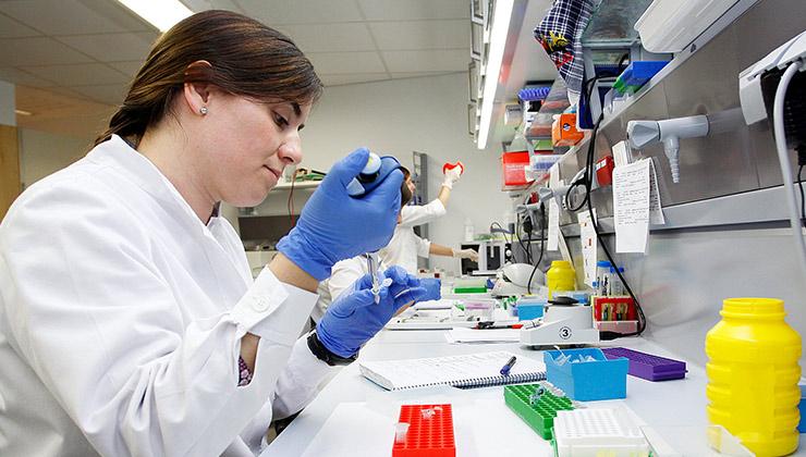 laboratorio genetica fundacion imo