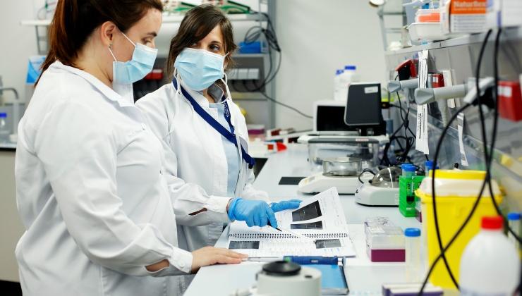 Identificación de nuevas variantes genéticas responsables del Síndrome de Stickler