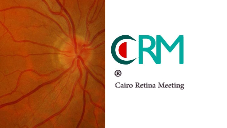 7th Cairo Retina Meeting