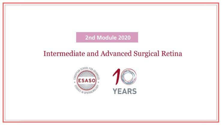 Intermediate and Advanced Surgical Retina ESASO