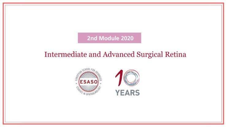 Intermediate and Advanced Surgical Retina ESASO