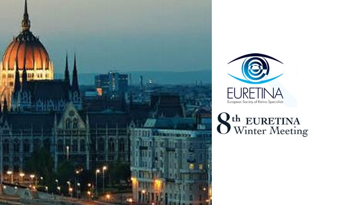 8th EURETINA Winter Meeting