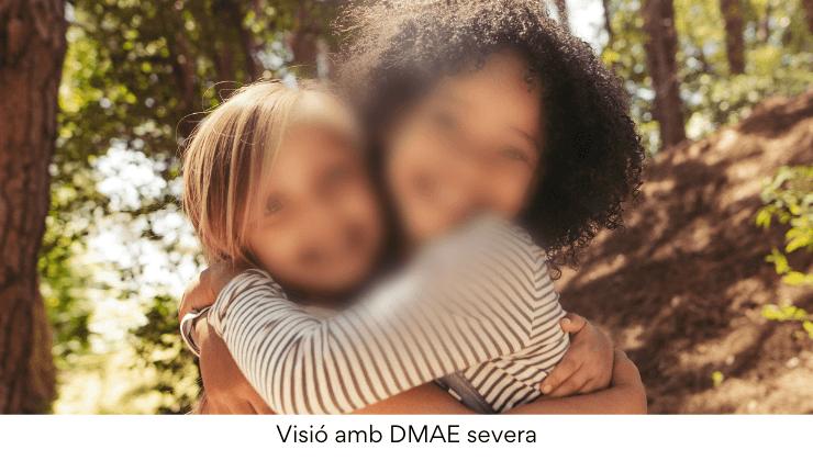 DMAE: projectes de recerca