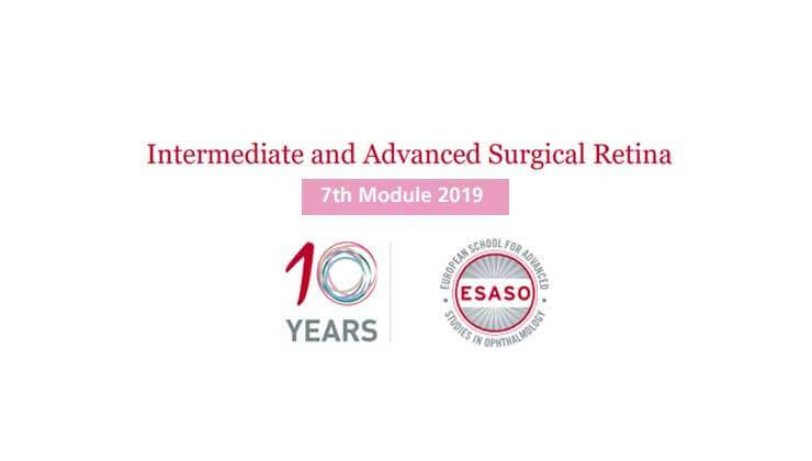 Intermediate and Advanced Surgical Retina