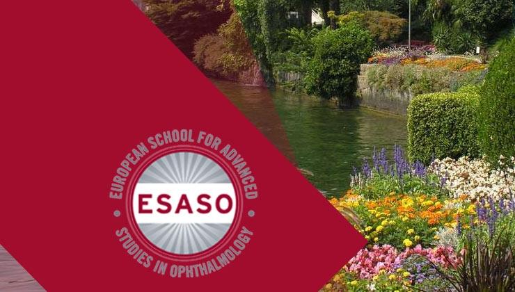 Cornea and Corneal Refractive Surgery ESASO Module